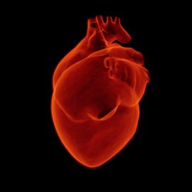 Jornada Riesgo Cardiovascular